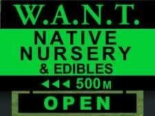 W.A.N.T Native Nursery Kuaotunu